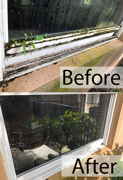 Before and After window cleaning in Jupiter FL